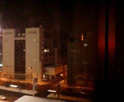 雪まつりに来たロン!_a0087471_2317846.jpg