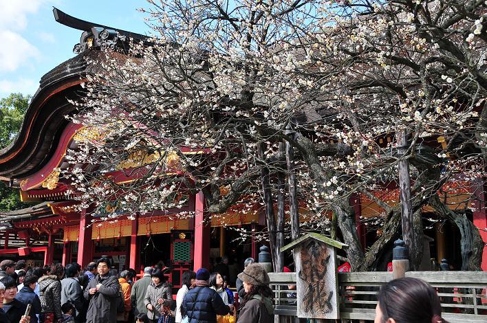 2月の観光 in 太宰府_a0042310_21294259.jpg