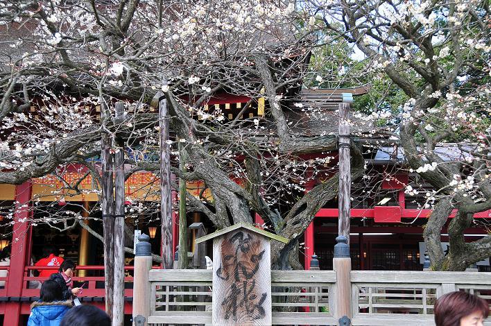 2月の観光 in 太宰府_a0042310_2130243.jpg