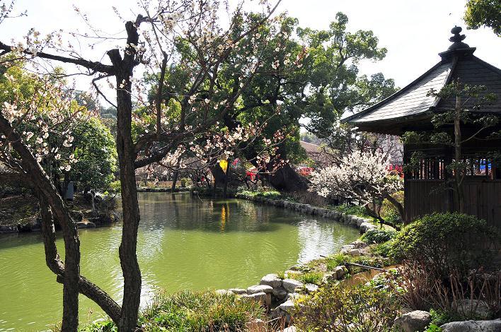 2月の観光 in 太宰府_a0042310_21375574.jpg