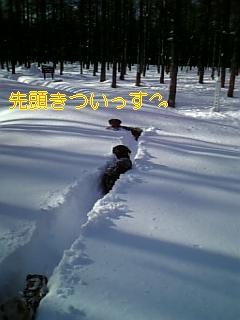 小夏参上!_f0148927_19492920.jpg
