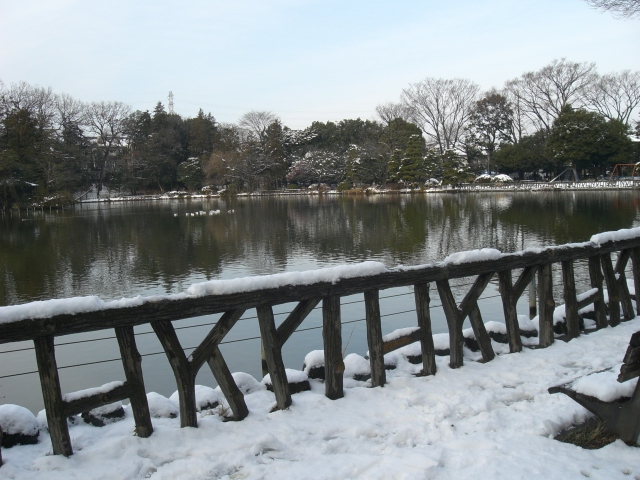 雪景色_e0085133_11445039.jpg