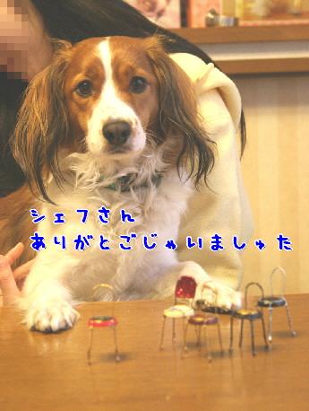 d0013149_0143639.jpg