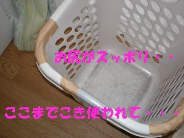a0085464_22173170.jpg