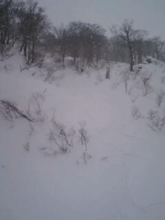 雪山情報★_c0151965_22192735.jpg