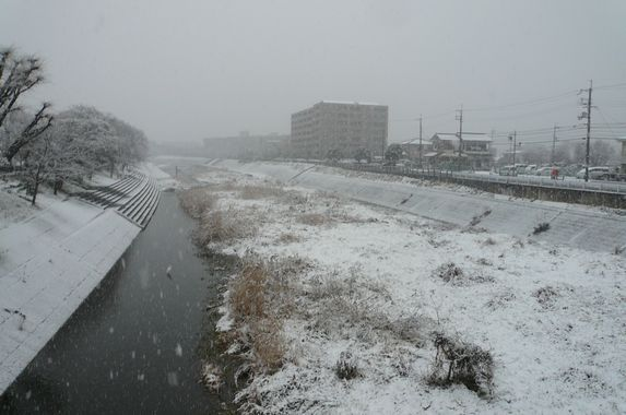Snow world_f0097683_19283057.jpg
