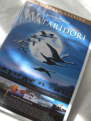Wataridori_b0105897_21452792.jpg