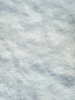 雪、待ち受け、ただの白い画面。_e0087699_22275770.jpg