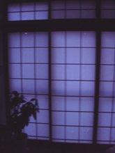 b0120001_159952.jpg