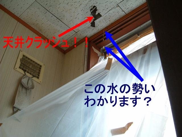 f0147821_16503832.jpg