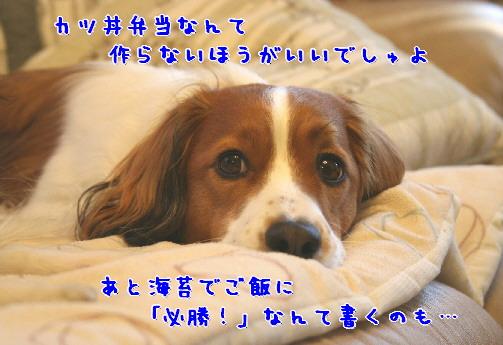 d0013149_0451257.jpg
