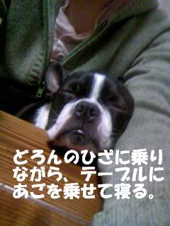c0092097_2003695.jpg