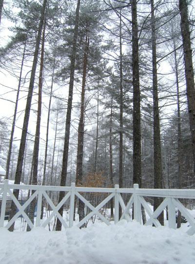 大雪でお客様は大喜びでした~~~☆_d0109415_13211164.jpg