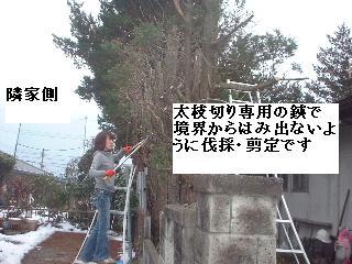 f0031037_20102290.jpg