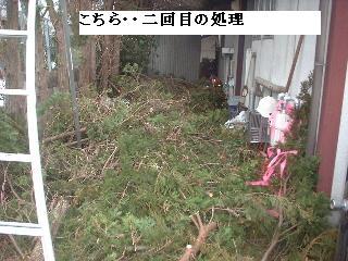 f0031037_2010372.jpg
