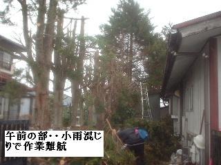 f0031037_20105188.jpg