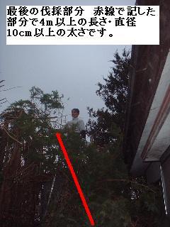 f0031037_20111823.jpg