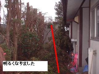 f0031037_20113137.jpg