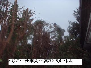 f0031037_2011349.jpg