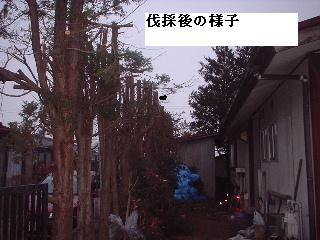 f0031037_20114313.jpg
