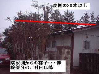 f0031037_20115424.jpg