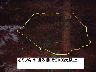 f0031037_20121819.jpg