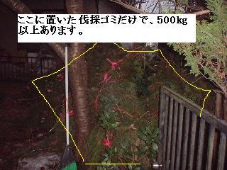 f0031037_2012665.jpg