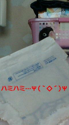 f0126418_14313627.jpg