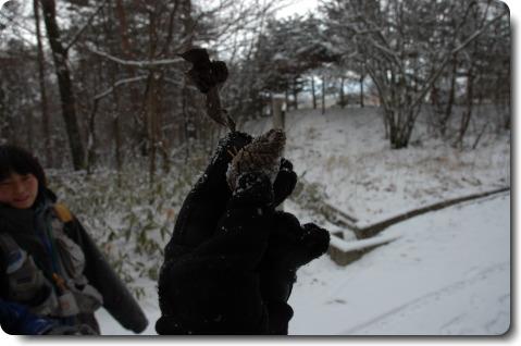 雪兎_f0090019_1415148.jpg