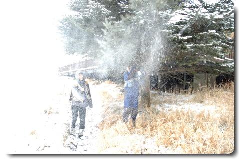 雪兎_f0090019_1421245.jpg