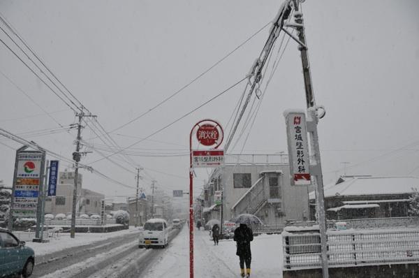 Snow,Snow,Snow...._b0028732_935129.jpg