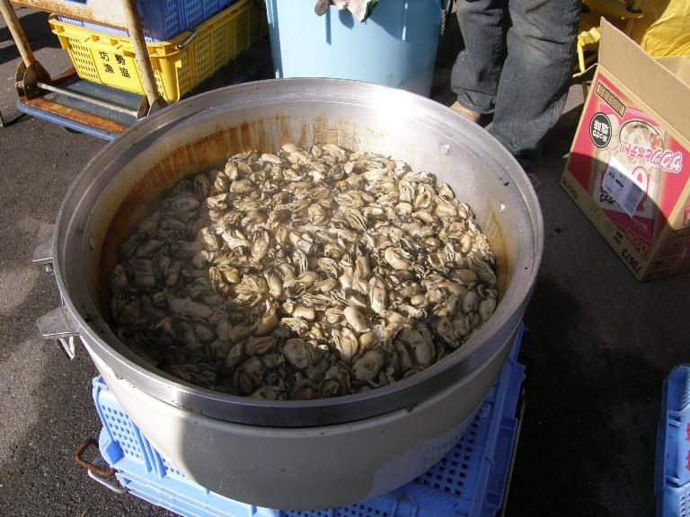 牡蠣オフ2008 その3_f0128542_22352018.jpg