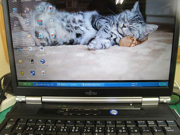 f0132946_1542687.jpg