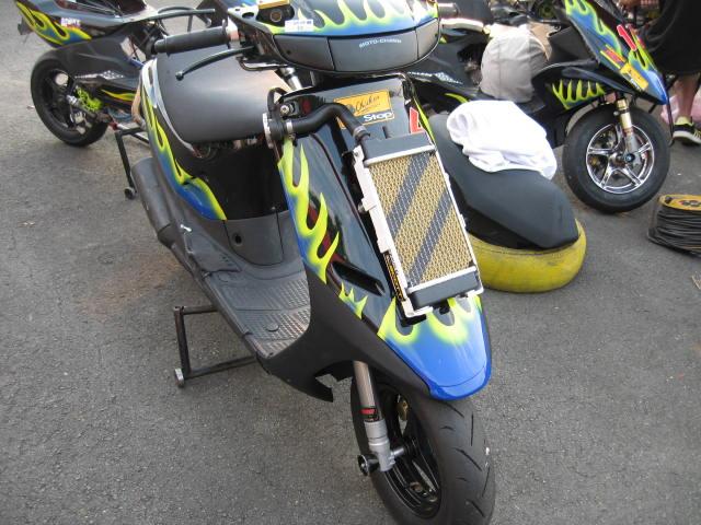 台湾の2ストレーサー_c0105285_1521379.jpg