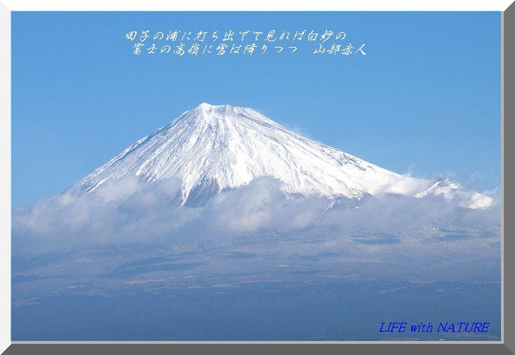 富士の高嶺_b0093088_7124327.jpg