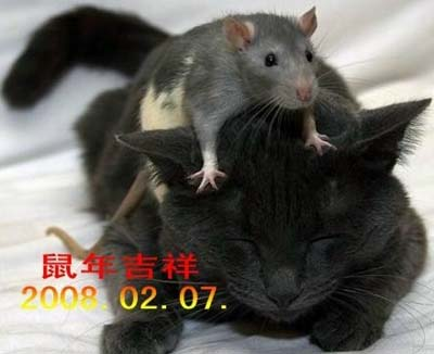 妙!!俄罗斯朋友寄给北京老朋友的贺中国年卡_d0007589_2083787.jpg