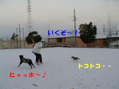 a0075993_14582660.jpg