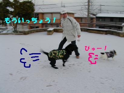 a0075993_1501921.jpg