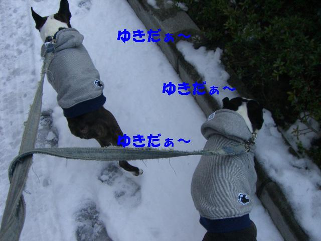 c0122897_1948253.jpg
