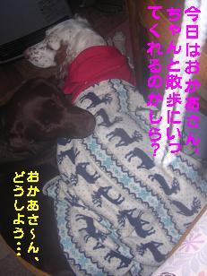 b0113725_14321225.jpg