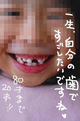 a0081837_13505222.jpg