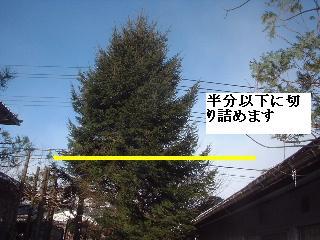 f0031037_22541621.jpg