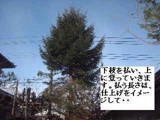 f0031037_22542837.jpg