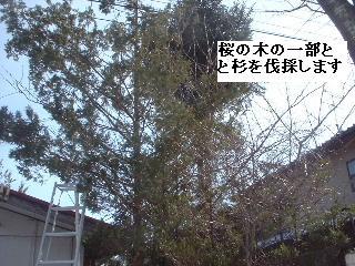 f0031037_22545211.jpg