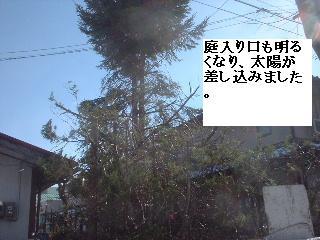 f0031037_2255339.jpg