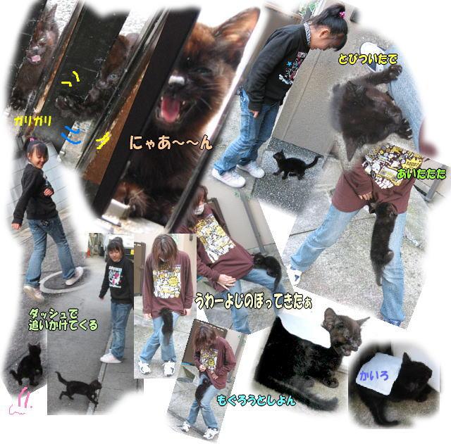 f0082367_16445628.jpg