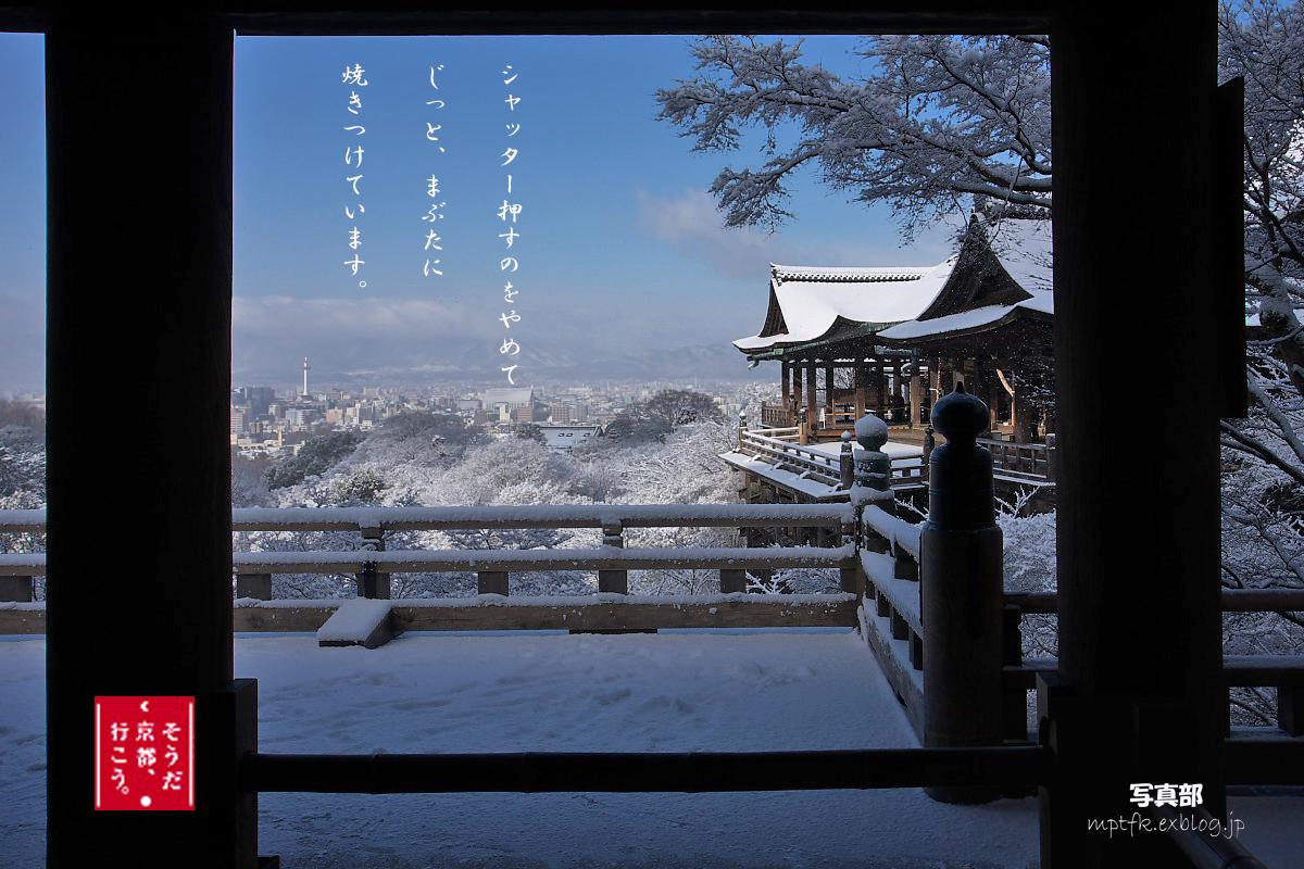 そうだ 京都、行こう。 (Coming Soon)_f0021869_22341592.jpg