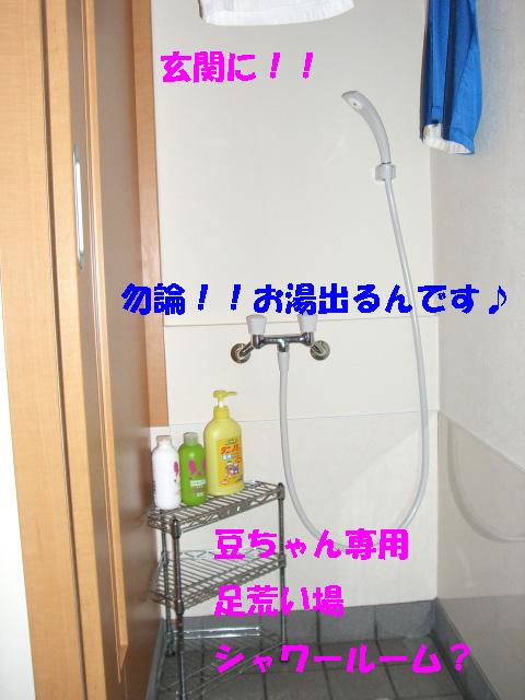 c0122897_2256193.jpg
