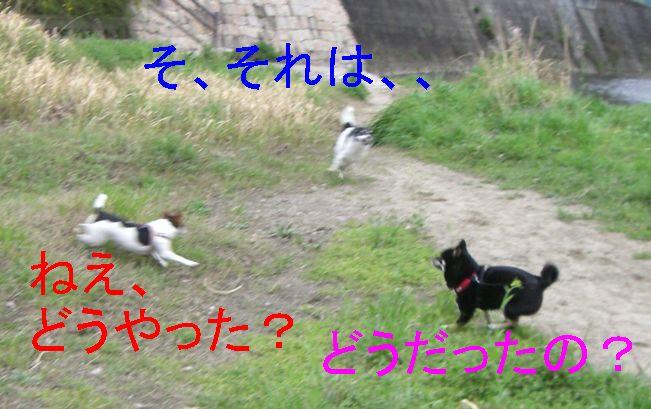 f0053952_10105869.jpg