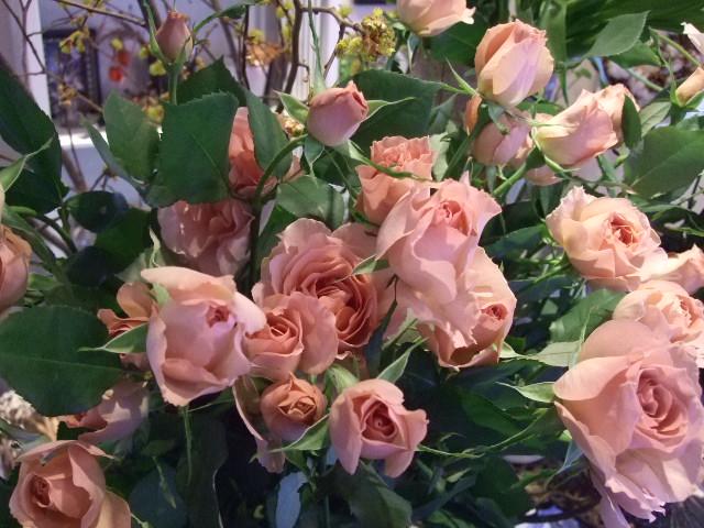 オークリーフ(青い花、プルモナリア)_f0049672_16405094.jpg